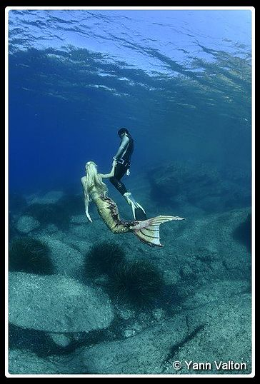 stage sirène ou mermaid (mermaiding)
