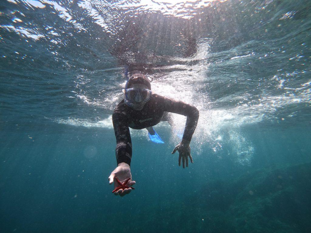 Randonnée palmée / snorkeling école d'apnée