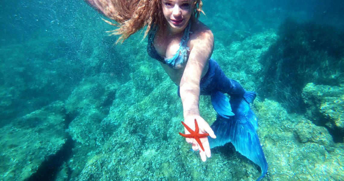 Belle surprise de fin de journée. Une étoile de mer, s'invite pour la photo !